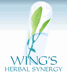 wings products pretoria